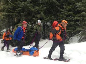 sked-basic-rescue-system-cobra-buckles-or-steel-buckles-international-orange-photo-1